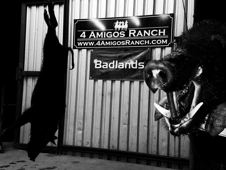 4 Amigos Ranch image 10