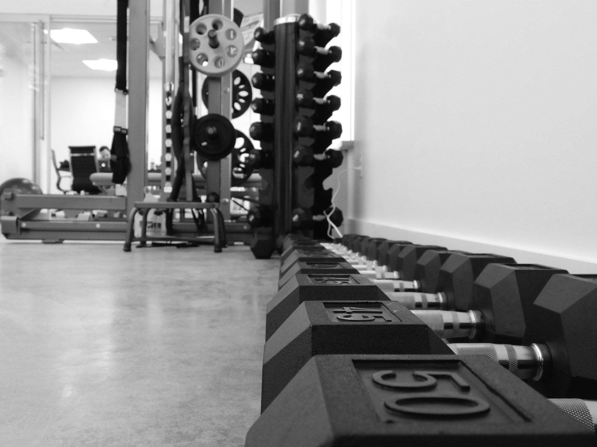 Performance Physical Therapy And Wellness image 2
