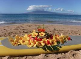 Aloha Ash Scattering image 2