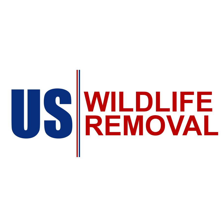 U.S. Wildlife Removal image 1