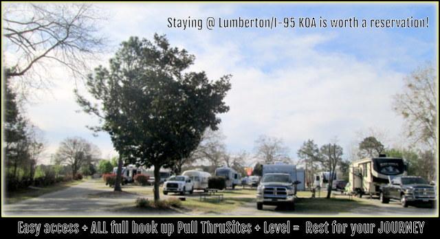 Lumberton / I-95 KOA Journey image 9