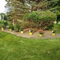 Ivan & Son Lawn Care image 26