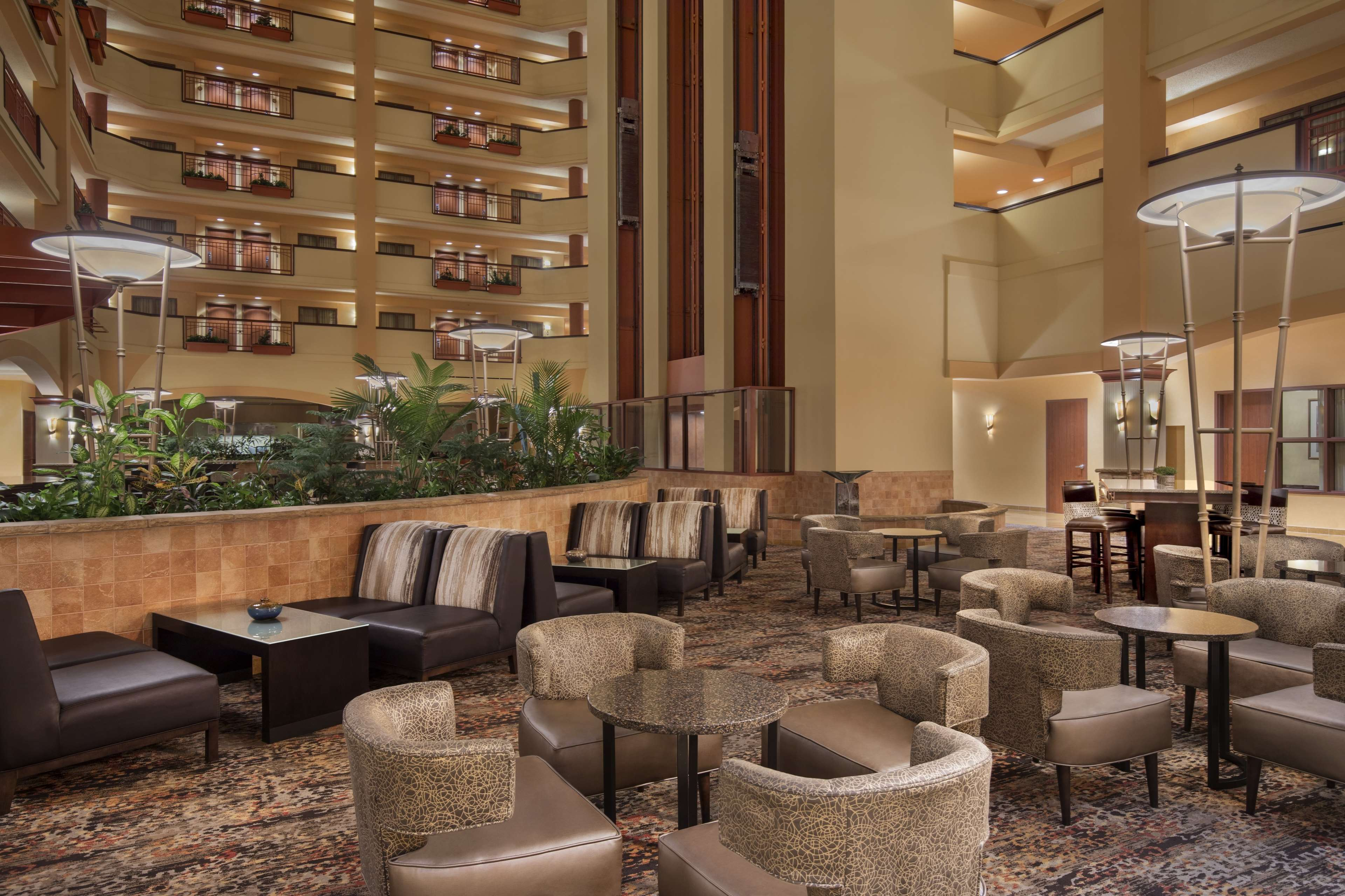 Embassy Suites by Hilton San Marcos Hotel Conference Center & Spa image 3