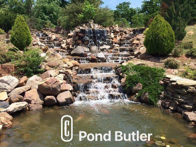 Pond Butler image 9