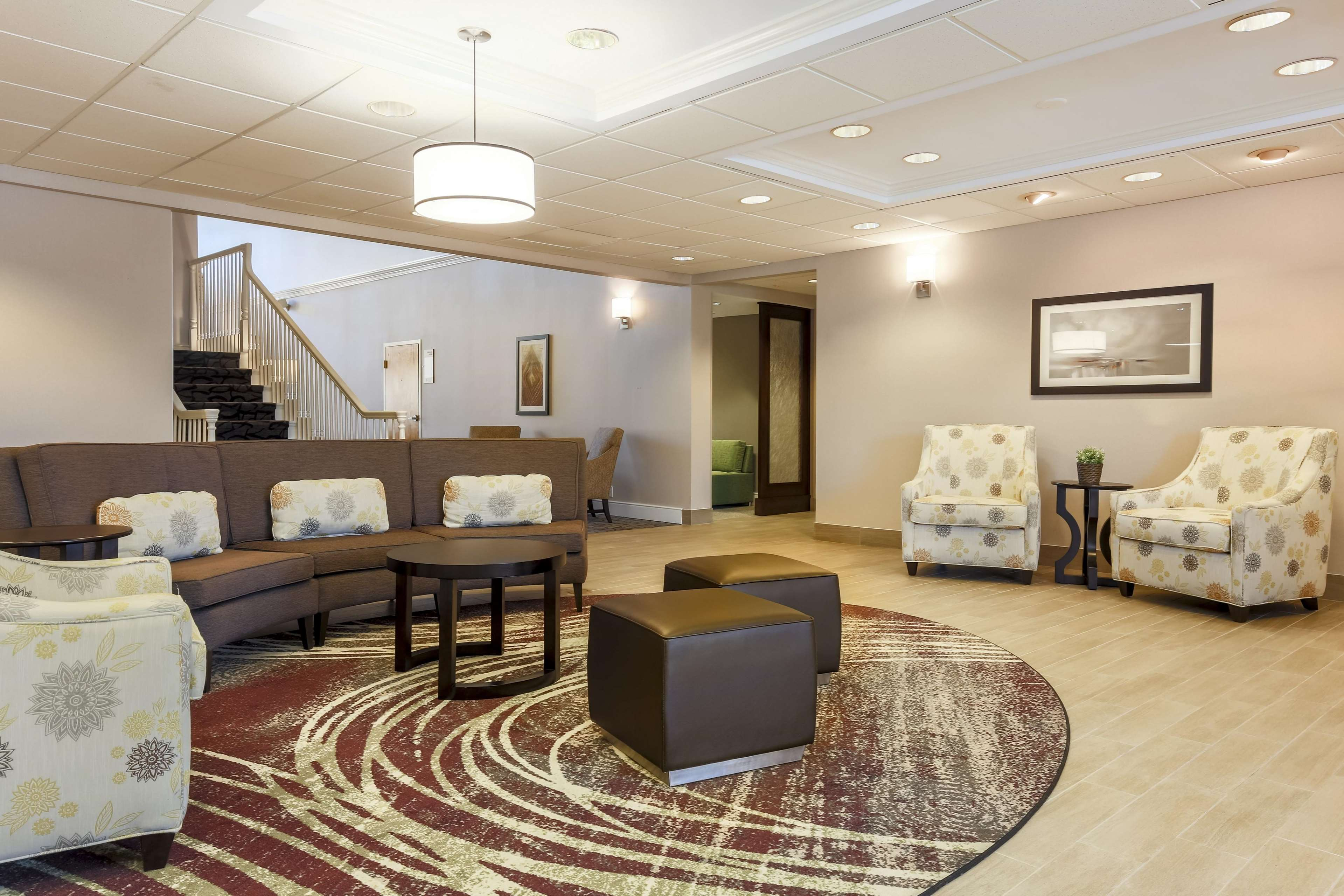 Homewood Suites by Hilton St. Petersburg Clearwater image 6