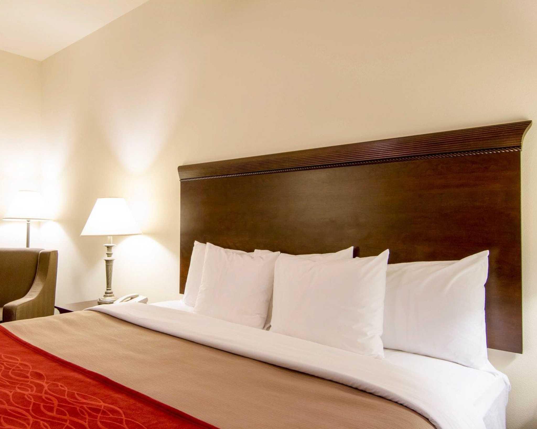 Comfort Inn & Suites Airport image 6