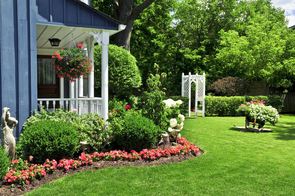 The Yard Surgeon - Lawn Care, Tree Trimming & Gardening