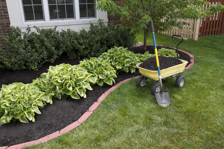 Green Care Landscape image 0