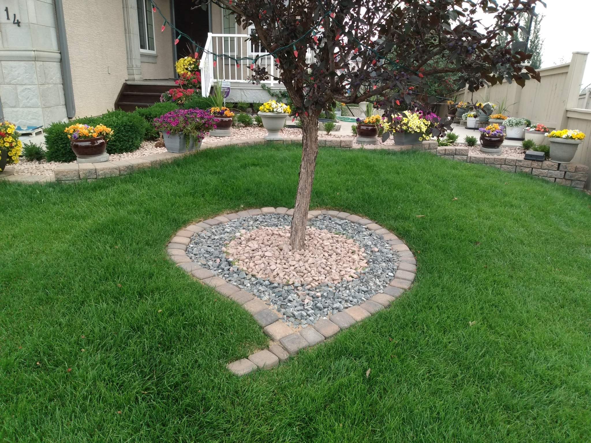 Cal-Arbor Landscaping, Snow + Ice Removal