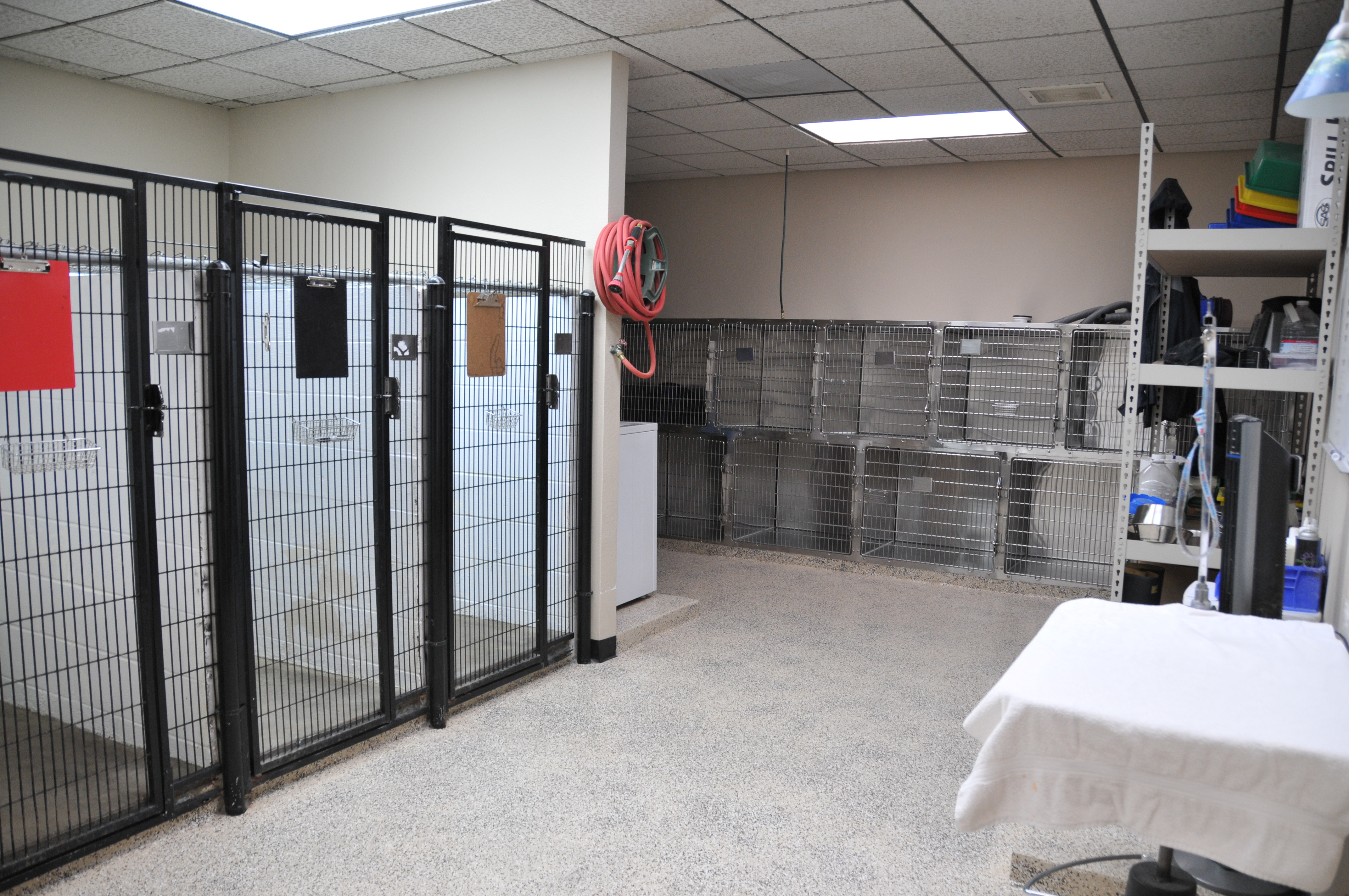 Town and Country Animal Clinic image 10