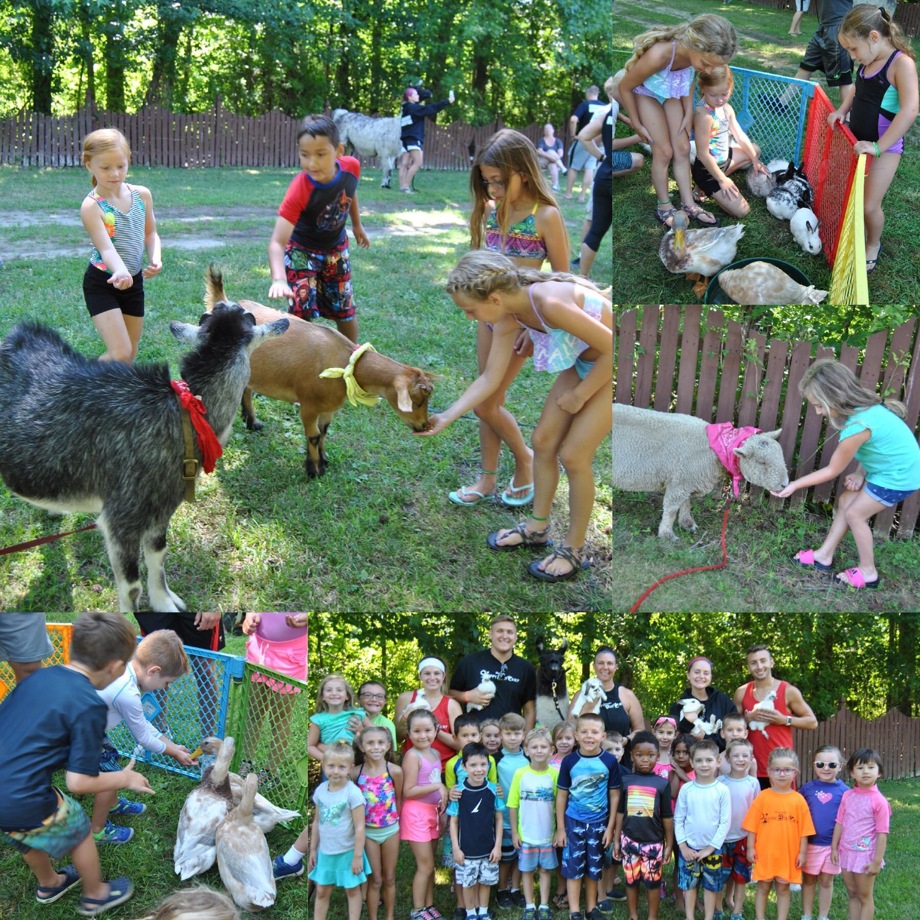Chartwell's Happy Day Camp Marlton image 55