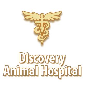 Discovery Animal Hospital