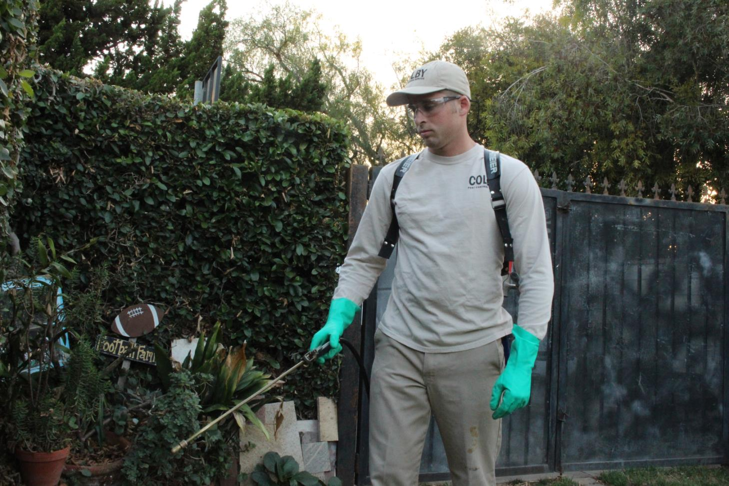 Colby Pest Control Service image 1