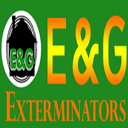 Bed Bug Exterminators In South Jersey