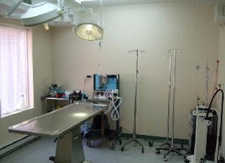 Clinique Médecin Vétérinaire De St-Louis à Montréal