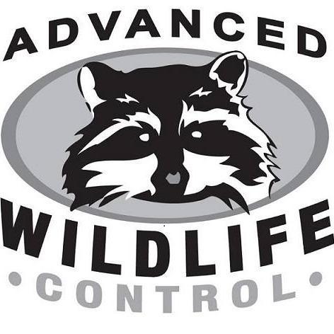 Advanced Wildlife Control - Mequon, WI 53097 - (262) 242-0121 | ShowMeLocal.com