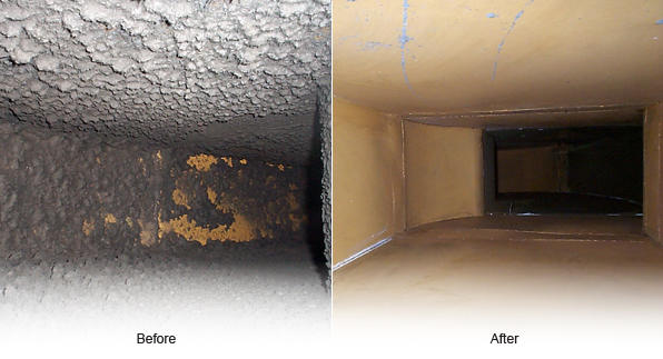 ProClean Cleaning Services Inc image 0