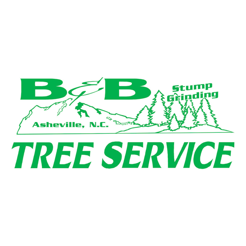B & B Tree Service Inc image 0