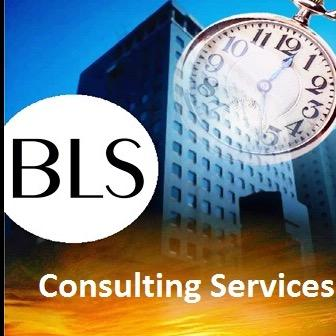 BLS Consulting Services