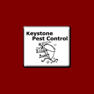 Keystone Pest Control image 0