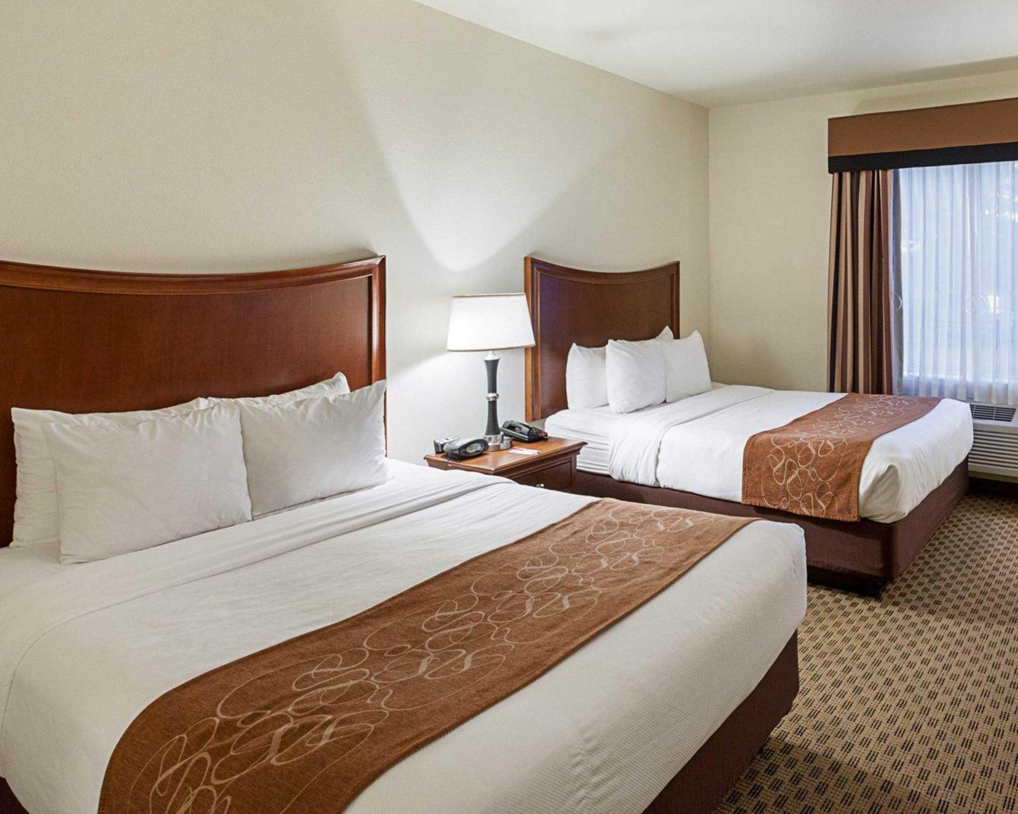 Comfort Suites San Antonio North - Stone Oak image 7