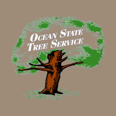 Ocean State Tree Service image 0