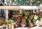 Chester Hometown Florist image 9