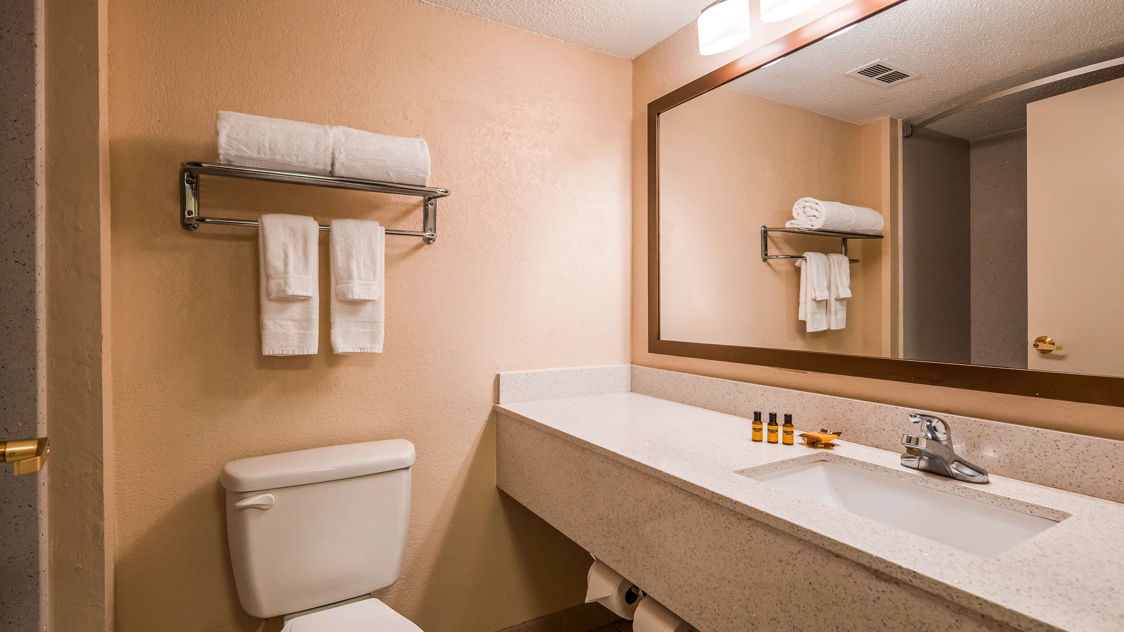 Best Western Plus Hotel & Suites Airport South image 19