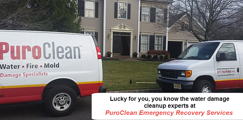 PuroClean Emergency Recovery Services image 0