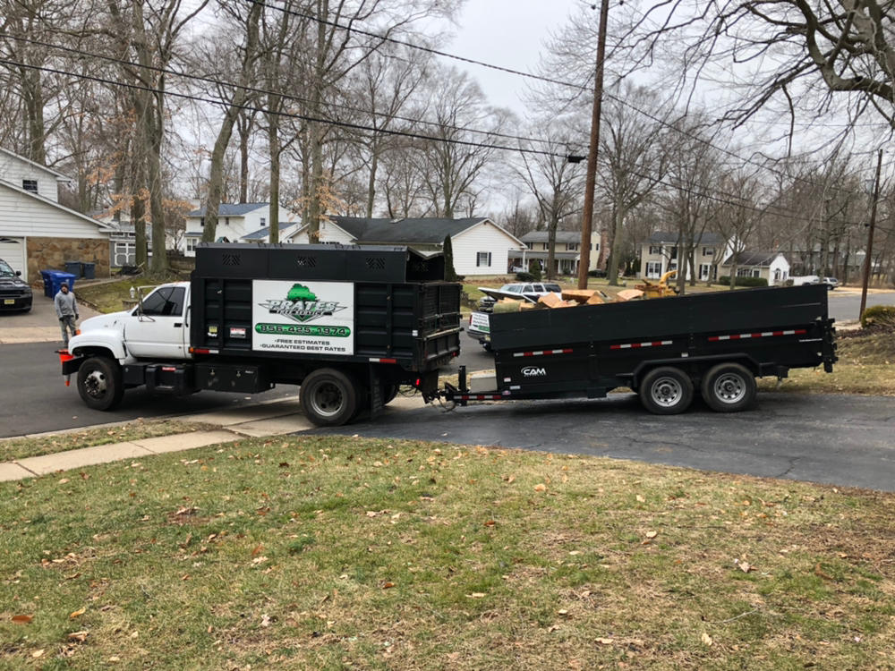 Prate's Tree Services image 5
