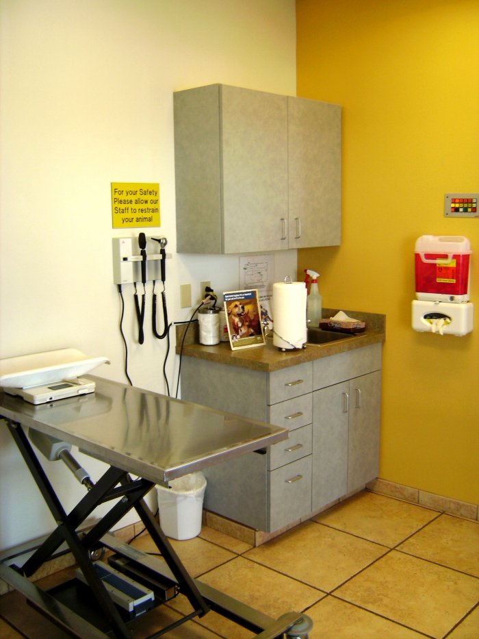 VCA West Mesa Animal Hospital image 0