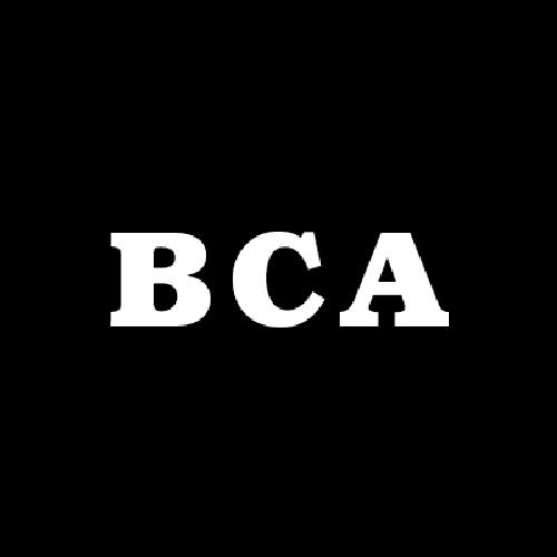 B&C Auto Inc.
