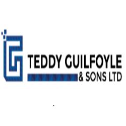 Teddy Guilfoyle & Sons Ltd 1