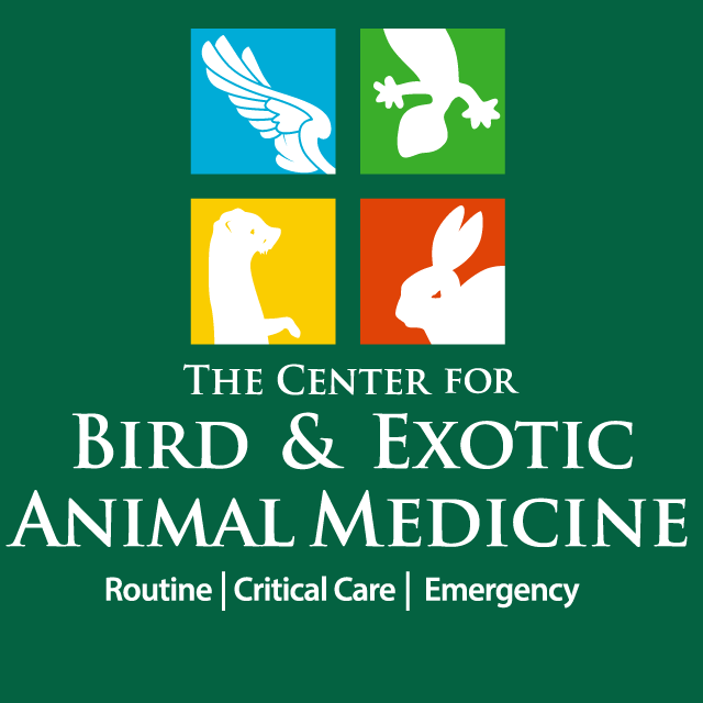 Center for Bird and Exotic Animal Medicine