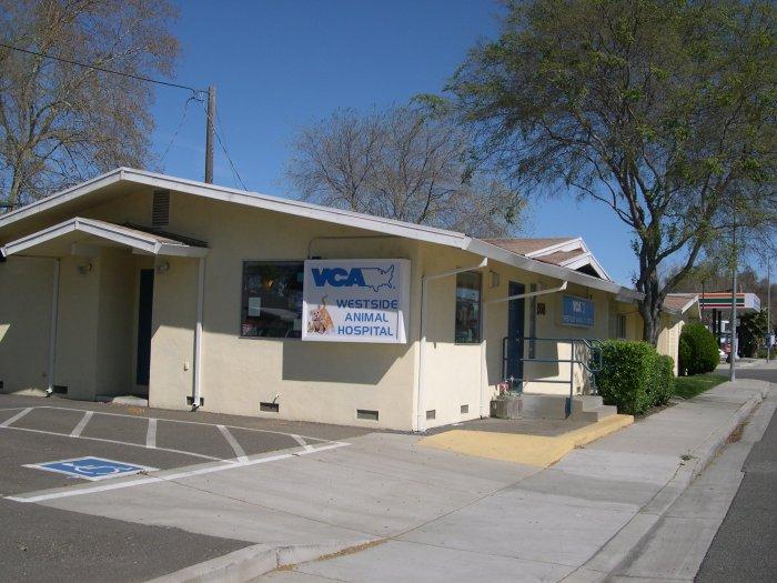 VCA Westside Animal Hospital image 7