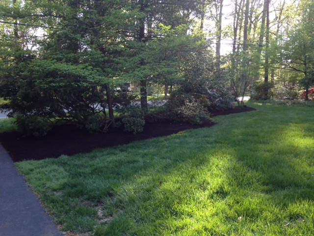 Frantum Lawncare and Landscaping LLC image 3