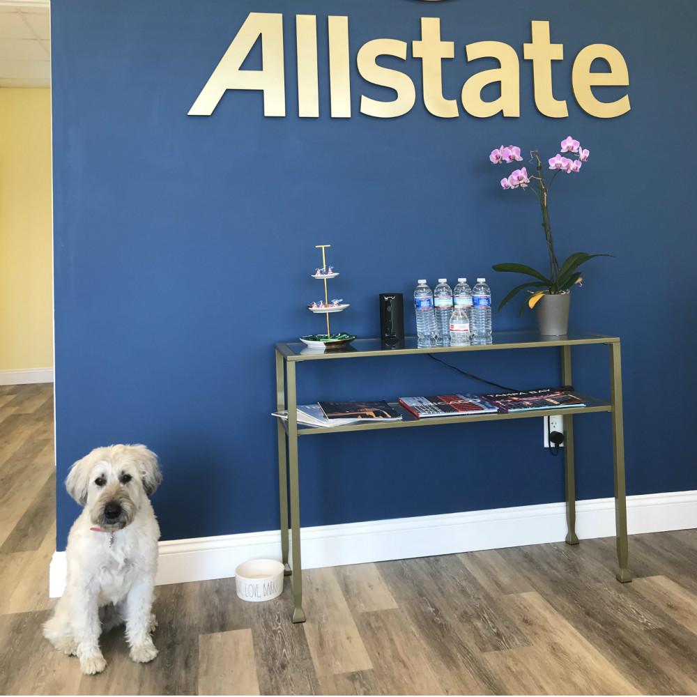 Melissa Bradshaw: Allstate Insurance image 3