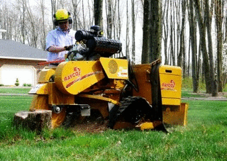 Knox Equipment Rental Inc image 0
