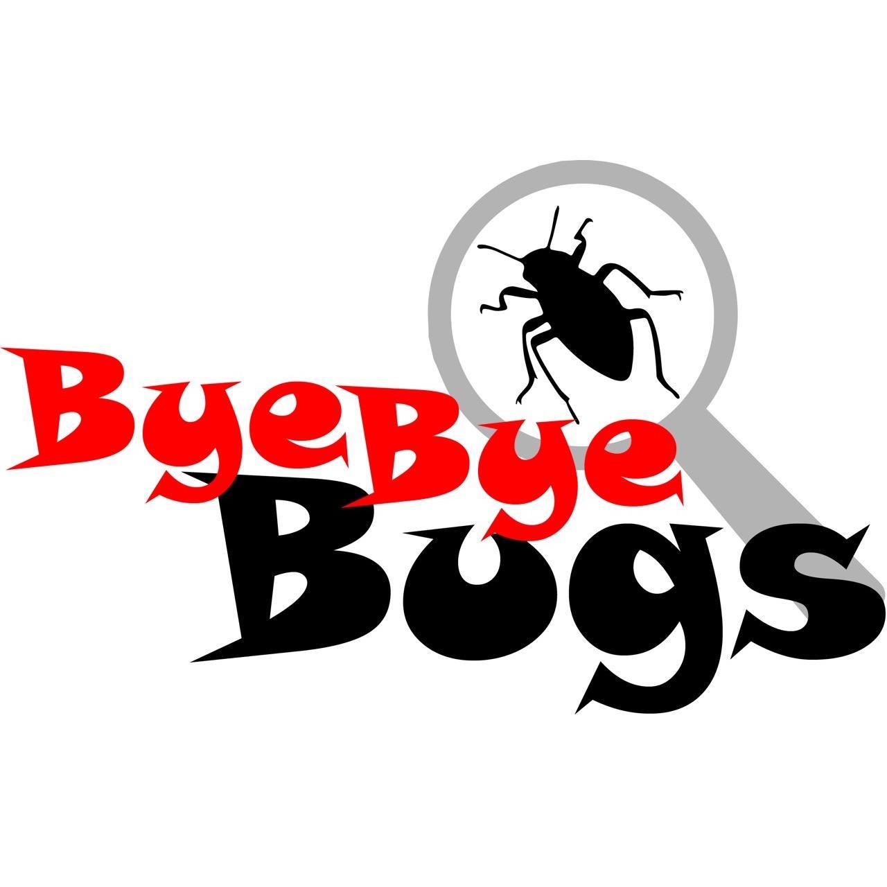 Bye Bye Bugs image 5