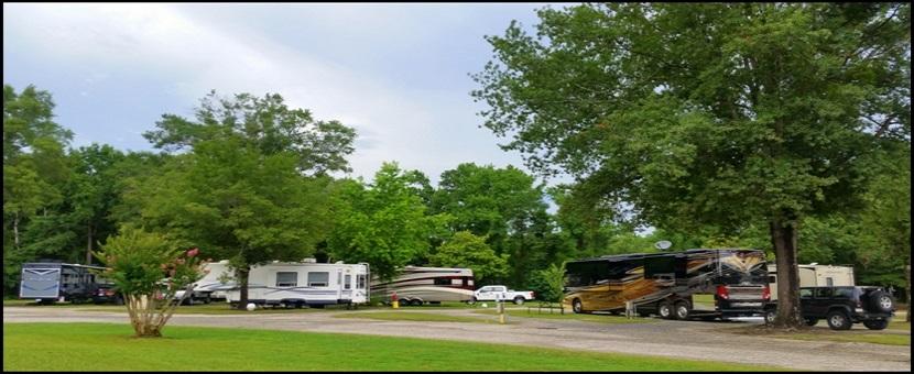 Lumberton / I-95 KOA Journey image 44