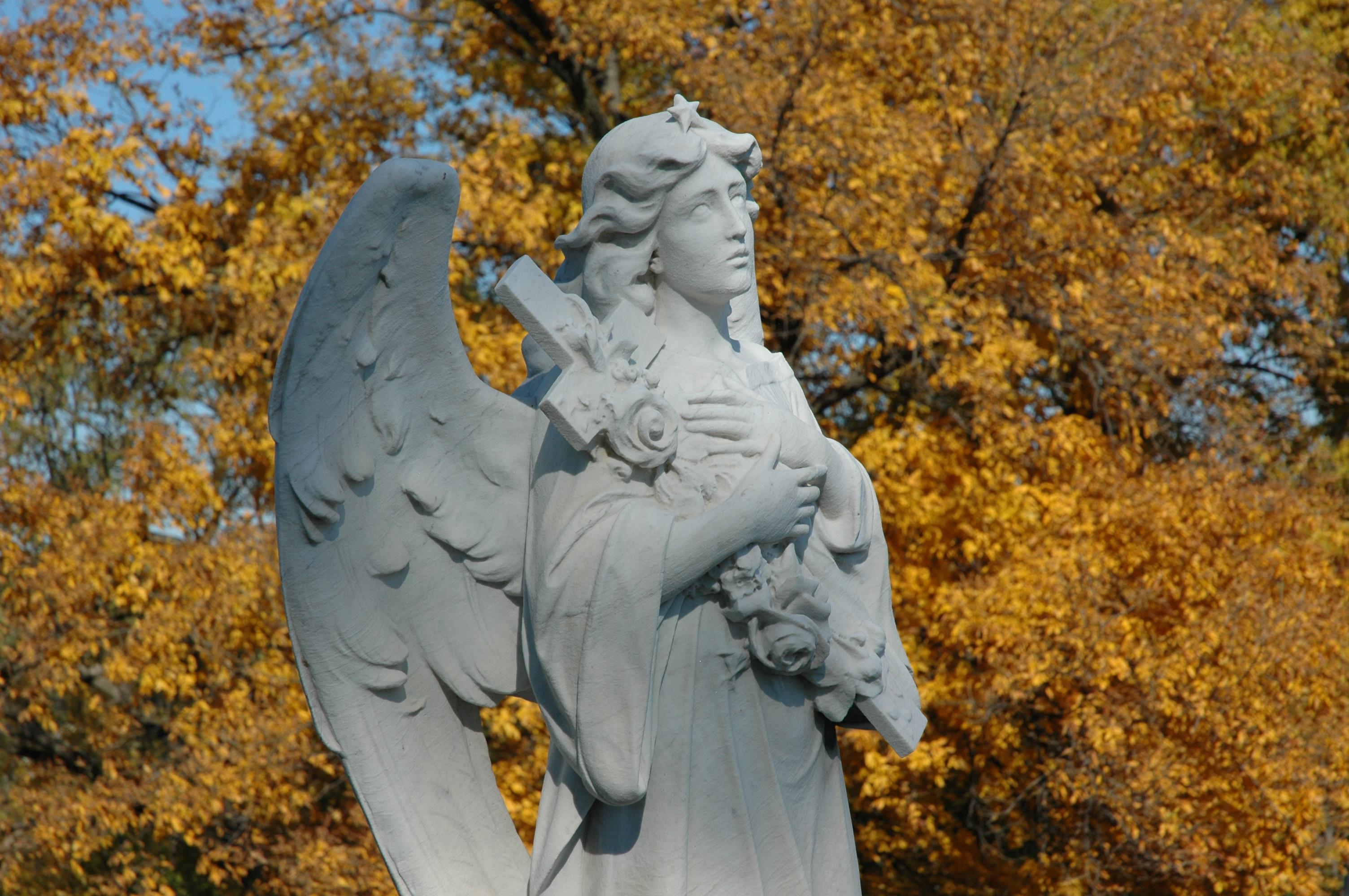 Calvary Cemetery image 0