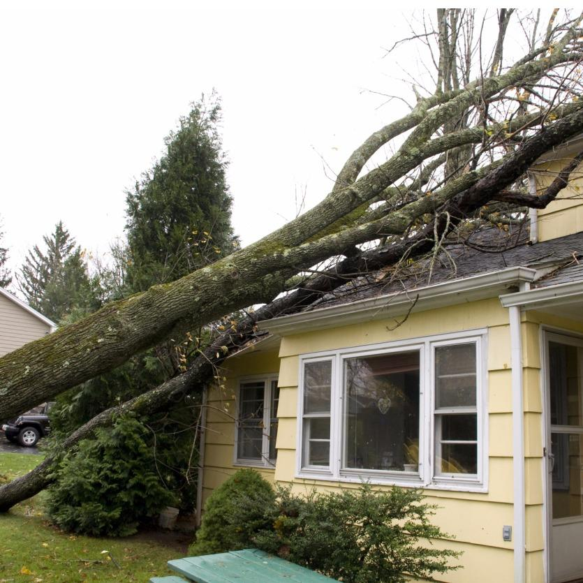 Assurance Claims Service Co PUBLIC ADJUSTERS