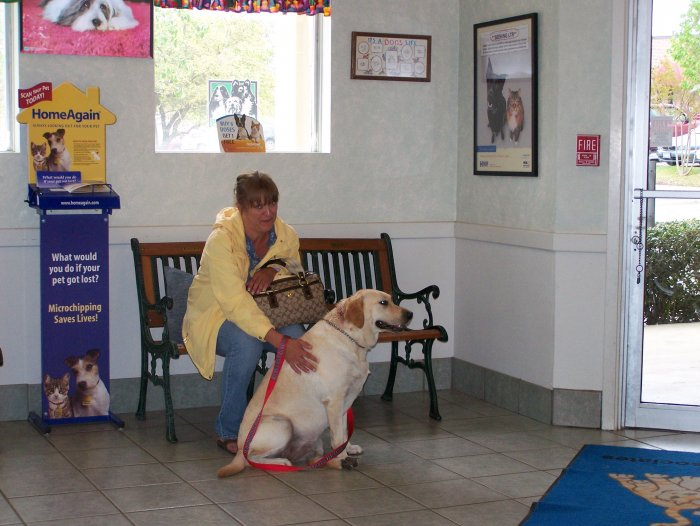 VCA Health Associates Animal Hospital image 0