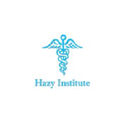 Hazy Institute image 3