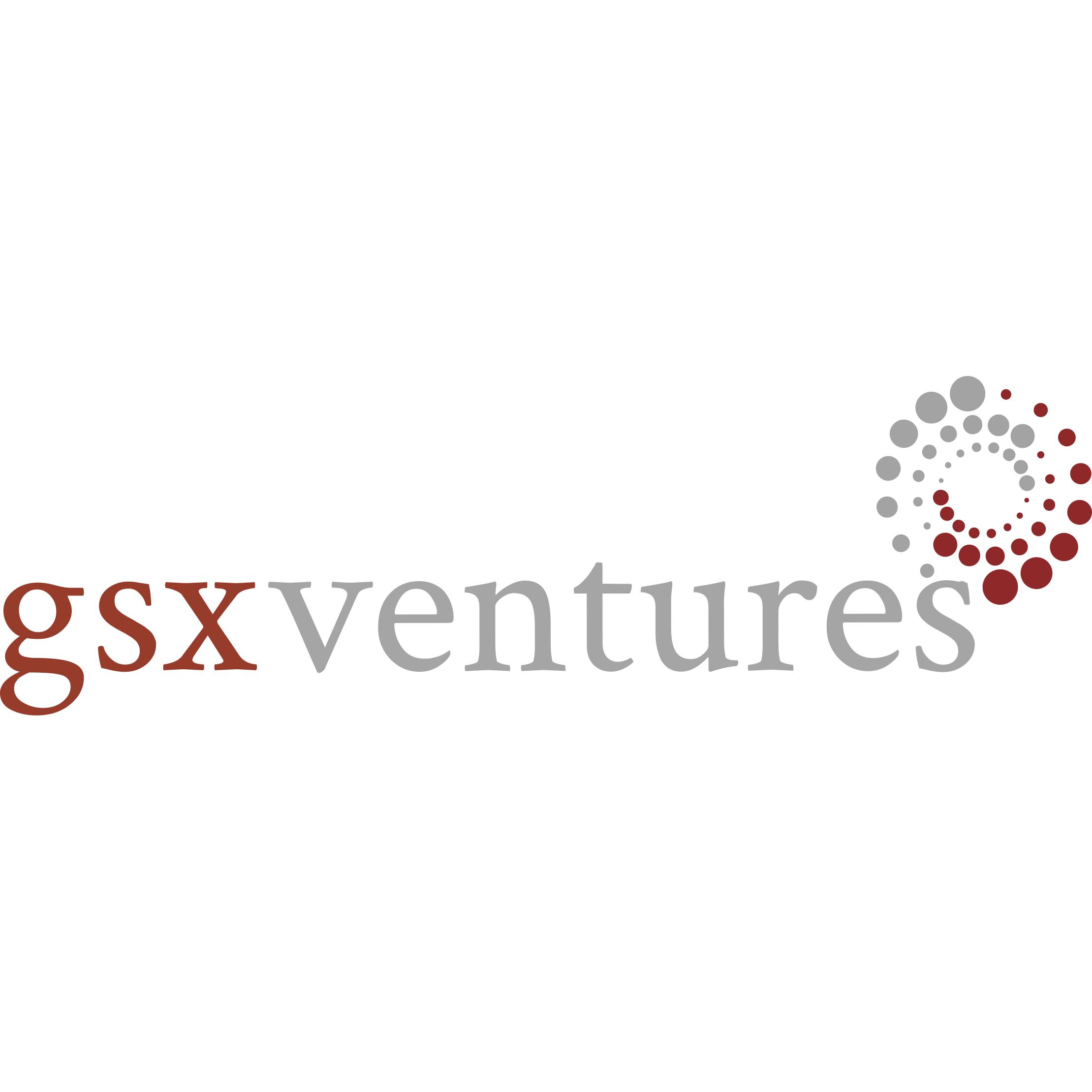 GSX Ventures