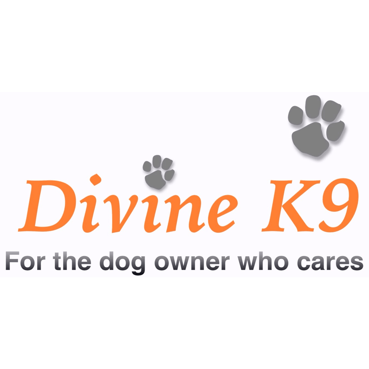 Divine K9, Boutique Dog Hotel, Bespoke Dog Grooming, Tailored Dog Care | 10 Church St, Southport PR9 0QT | +44 7398 763331