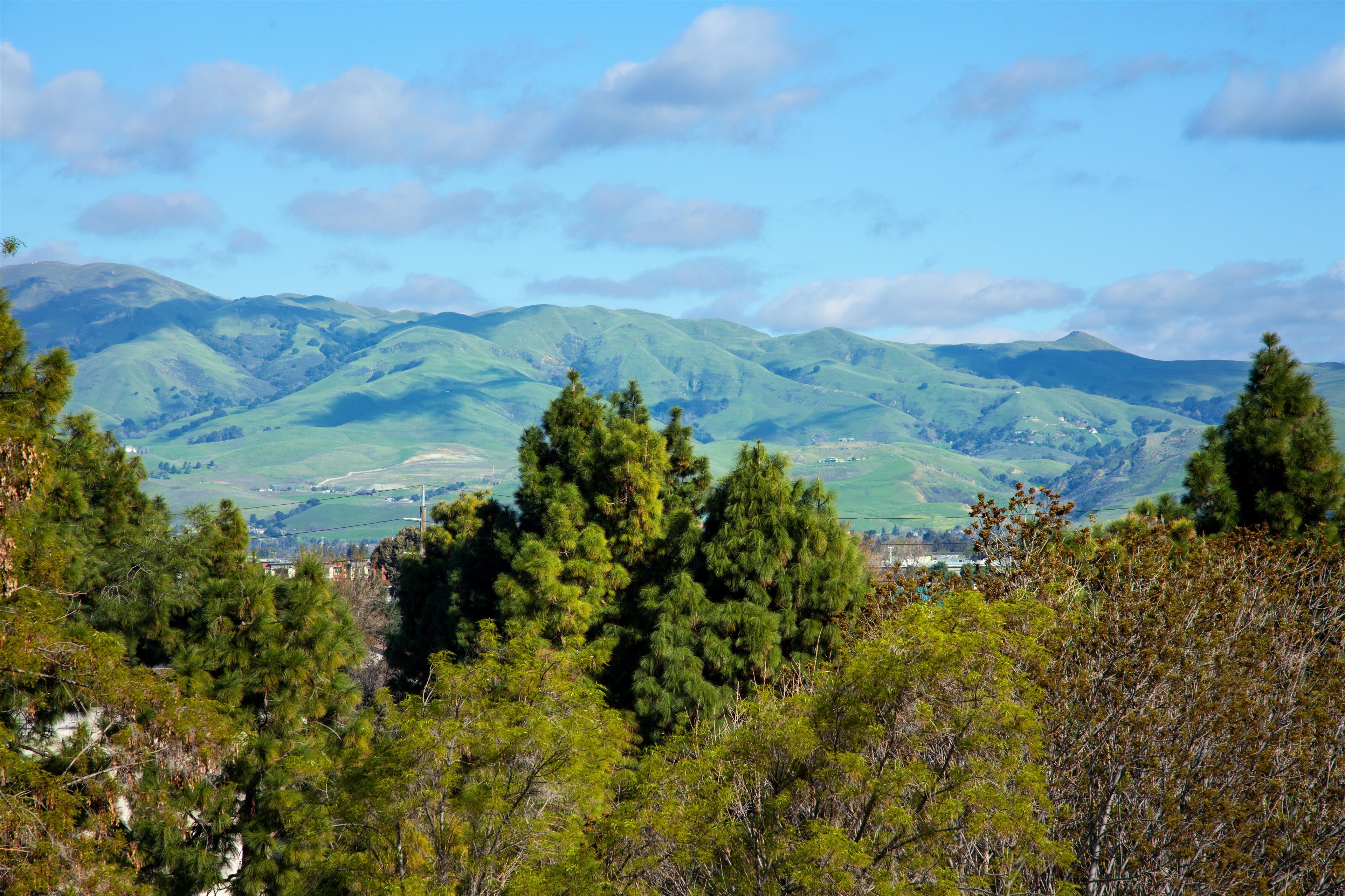 Sheraton San Jose Hotel image 21