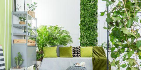 P & M Garden Services Inc.