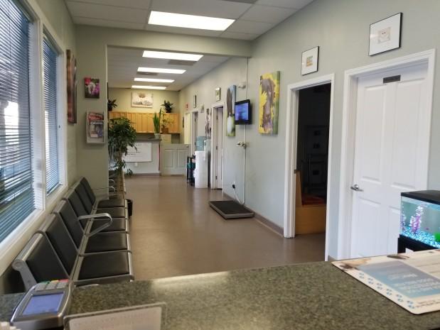 Central Coast Pet Hospital & ER image 2