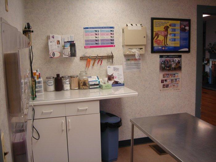 VCA Palmer Animal Hospital image 5